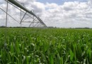 RIEGO PARA PROFESIONALES:  Irrigation Water Productivity in the Western USA –  by Tom Trut