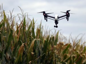 DRONES23 DRONES - drone, flown by Zach Fiene, co-founder with DMZ Aerial, an aerial drone company that does agriculture work, files at a test plot called the Premier Insight Plot, located in Mazomanie, WI on Thursday, September 22, 2015. The company supplies drone technology to farms enabling an overview of crops to determine problem areas without having to physically walk to drive to areas of the farm land. Photo by Mike De Sisti / MDESISTI@JOURNALSENTINEL.COM